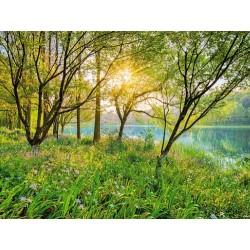 Fotomural Spring Lake 8-524